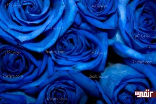 آبی، تسکین دهنده و آرام