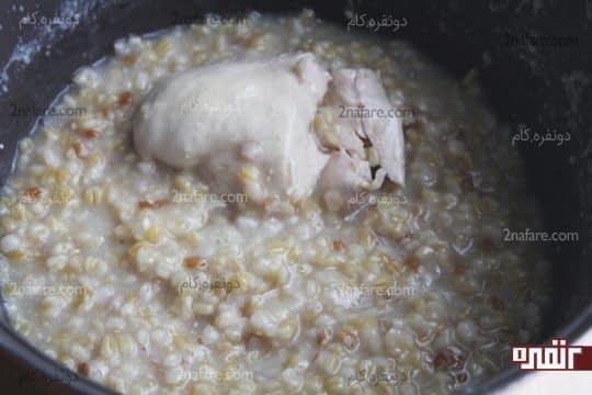 مرغ و گندم پخته شده