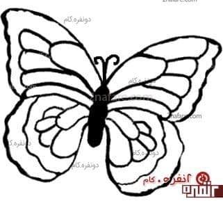 الگوی پروانه برای پروانه شکلاتی