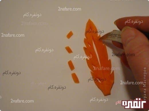 تزیین غذا با هویج به شکل برگ
