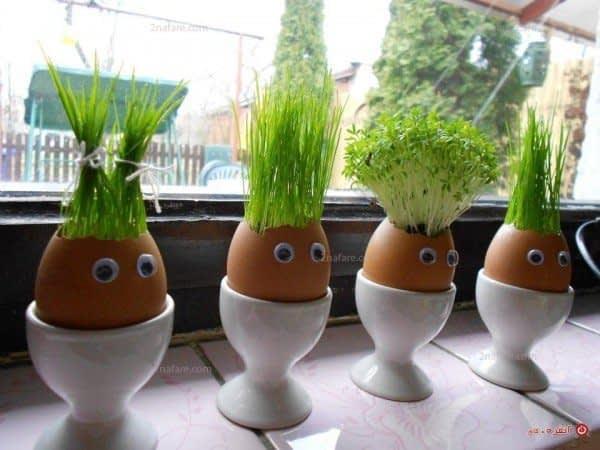 سبزه تخم مرغی زیبا