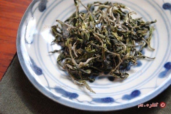 برگهای چای هندی