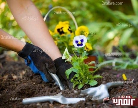 باغبانی کردن، ورزشی مناسب و سبک