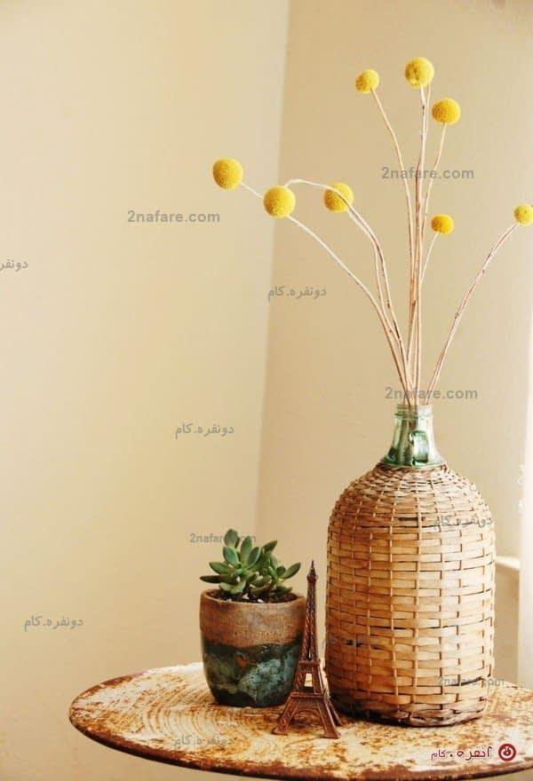 گلدان شیشه ای با پوشش حصیری و گلدان کاکتوس سفالی