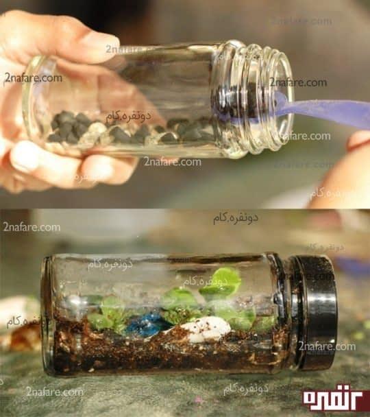 ساخت گیاه واریوم با شیشه مربا