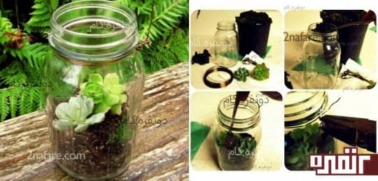 مراحل ساخت گیاه واریوم