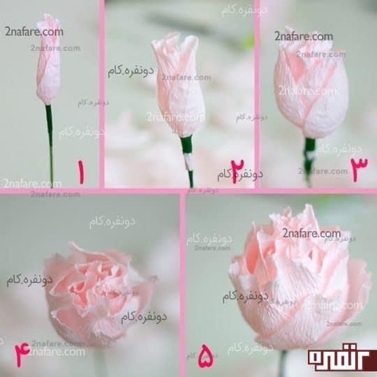 مراحل پیچیدن گلبرگهای گل