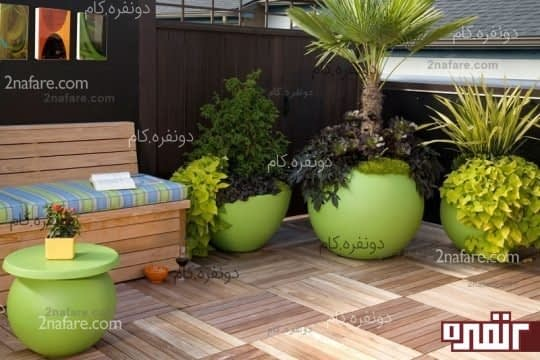 گیاهان تاثیرگذار در فضای خانه