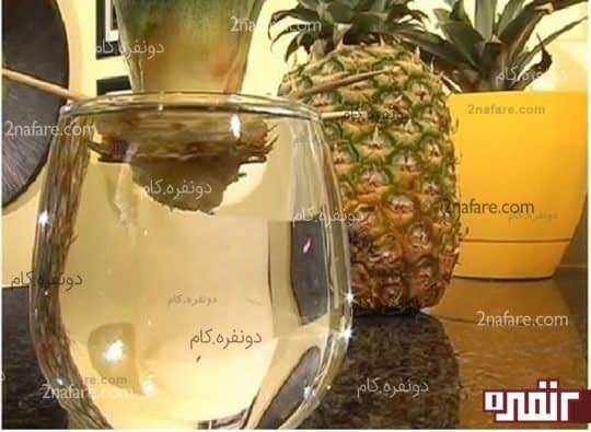 تاج آناناس را داخل لیوان آب قرار دهید