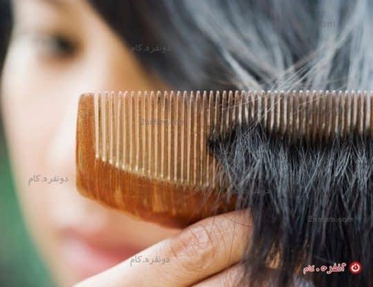چجوری از سفید شدن مو جلوگیری کنیم؟
