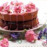 طرز تهیه کیک اسفنجی ویکتوریا برای پایه