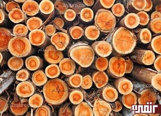 ادوکلن های با رایحه چوب