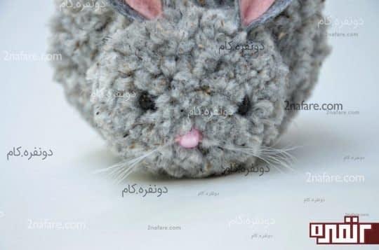 جسباندن چشم ها و بینی خرگوش