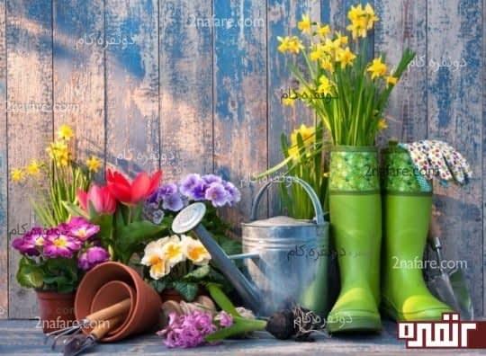 باغبانی و کاهش استرس