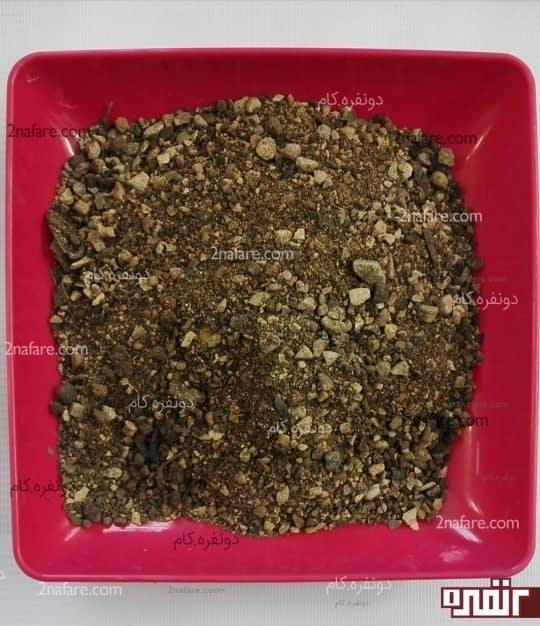 خاک مخصوص برای کاکتوس ها و ساکولنت ها