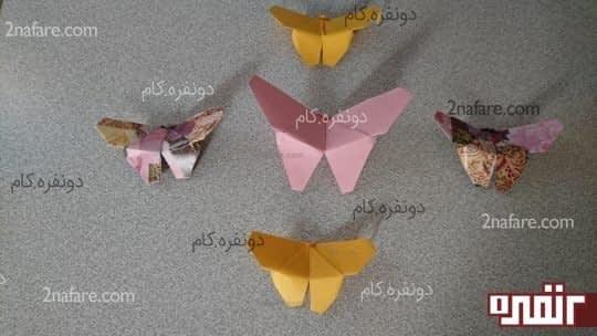 پروانه صورتی