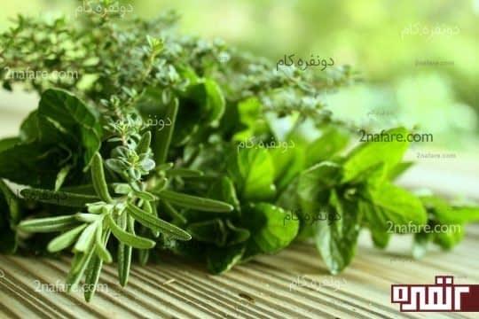 حفظ و نگهداری از سبزیجات