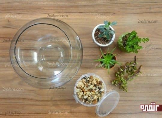 انتخاب گیاه و طرف مورد نظر