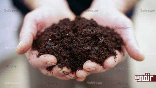 خاک مناسب رشد گیاه