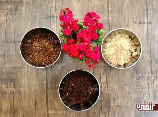 خاک مناسب برای کالانکوآ