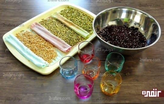 استفاده از لیوان به عنوان ظرف و خاک مناسب برای کاشت بذر ها