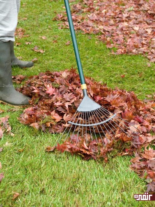 تمیز کردن باغ