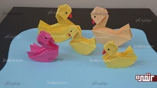 اردک های رنگی