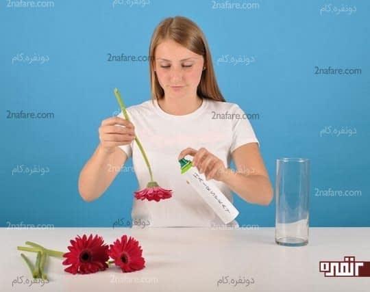 اسپری کردن گل ها با اسپری مو