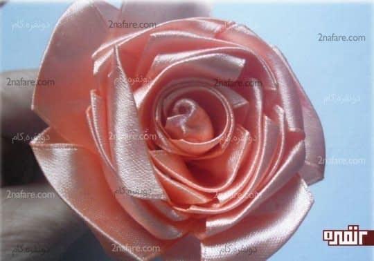 گل رز زیبا با روبان