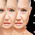چهار عضو بدن که در روند پیری آسیب پذیرتر هستند