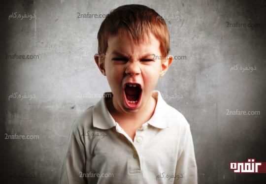 الگوبرداری از والدین و پرخاشگری فرزندان