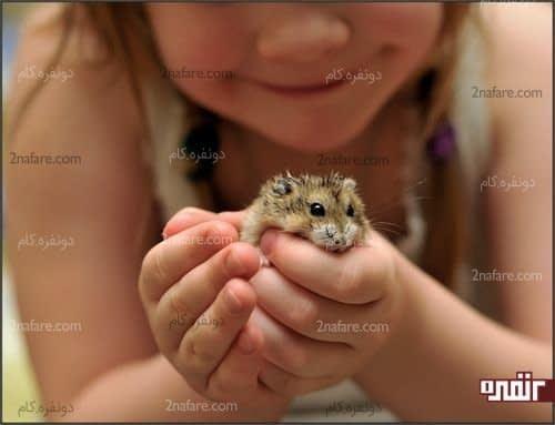 حیوانات خانگی مفید برای بچه ها