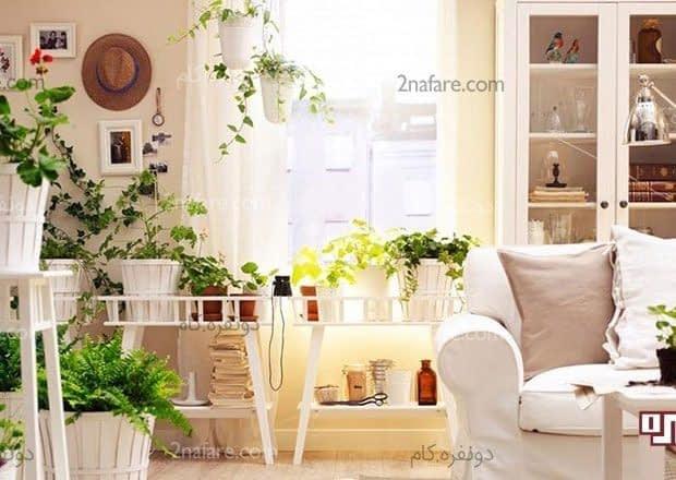 خونه ای خوشبو با استفاده از گل و گیاه