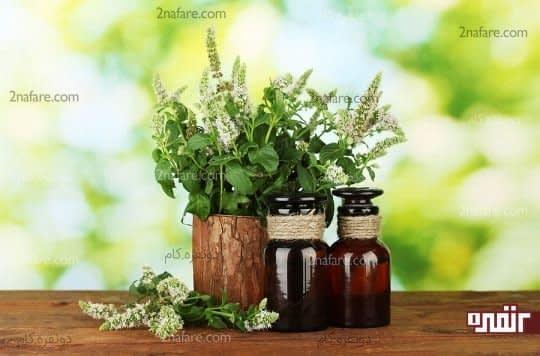 محصولات بهداشتی ارگانیک طبیعی و بدون مواد شیمیایی هستند