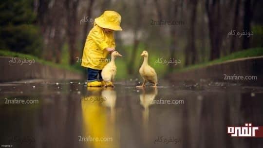پیاده روی کودکان و حیوانات