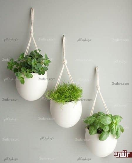 گلدانی از سبزیجات