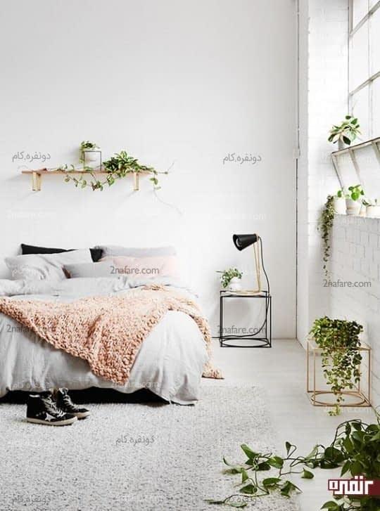 گوشه و کنار اتاقتان را با گل زیباتر کنید