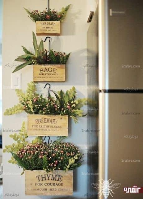 گیاهان گلدانی و دارویی