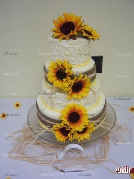 کیک زیبای عروسی