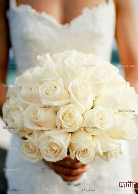 گل رز سفید انتخاب کلاسیک