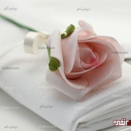 گل رز فومی صورتی رنگ