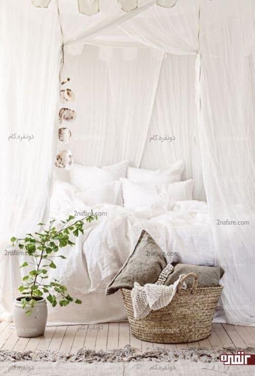 گیاهان زیبا برای استفاده در اتاق خواب