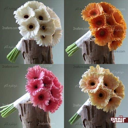 انواع دسته گل عروس با گل ژربرا