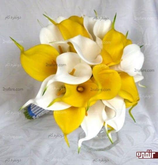 دسته گل زیبای عروس با ترکیب رنگ سفید و زرد از گل شیپوری