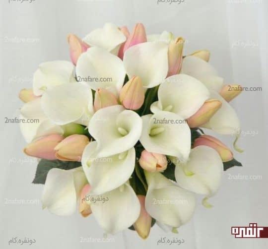 دسته گل شیپوری و لاله
