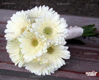 دسته گل ژربرای سفید