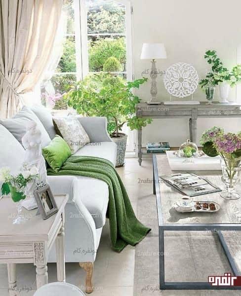سبزی و طراوت طبیعت در کنار رنگ خاکستری