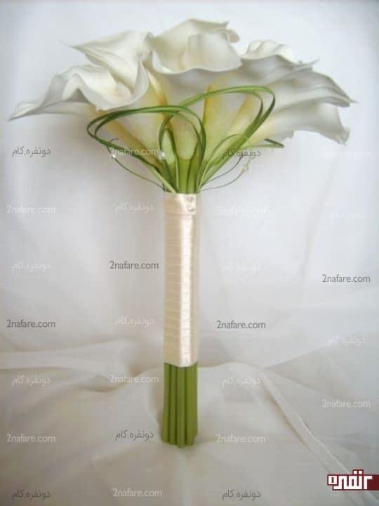 شیپوری سفید و کلاسیک