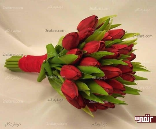لاله ی قرمز و جذاب برای دسته گل عروس