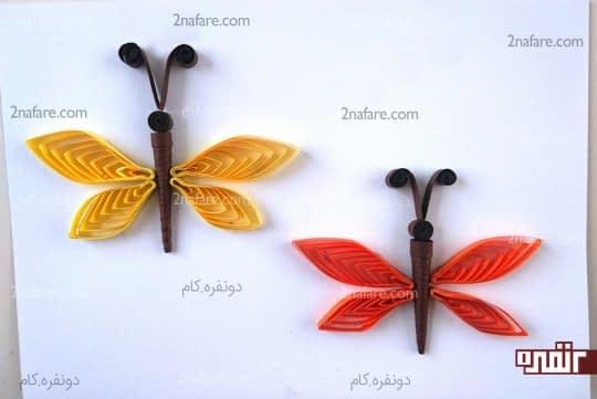 پروانه های یک رنگ